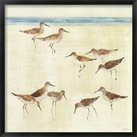 Framed Sandpipers