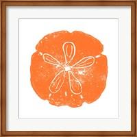 Framed Orange Sand Dollar
