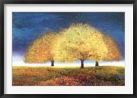 Framed Dreaming Trio