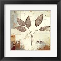 Framed Silver Leaves III