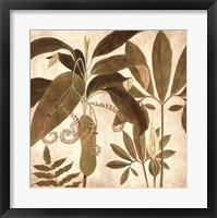 Framed Palm Persuasion I