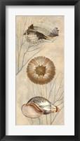 Framed Ocean Companions II