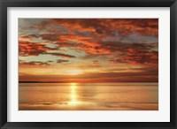 Framed Sunlit
