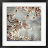 Framed Aqua Blossoms II