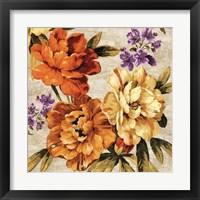 Framed Brilliant Bloom I