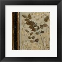 Framed Earthen Textures V