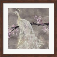 Framed Peacock Serenity II