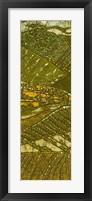 Vineyard Batik I Framed Print