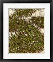 Framed Batik Frond I