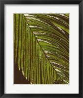 Framed Batik Frond II