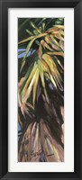 Framed Wild Palm I
