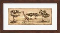 Framed Safari Giraffe