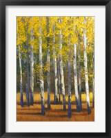 Framed Fall in Glory II