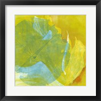Framed Lotus Monotype I