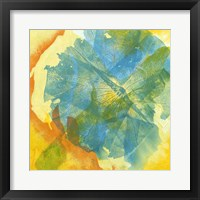 Framed Lotus Monotype II