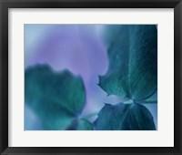 Intricacies II Framed Print