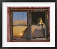 Framed Kitten Window