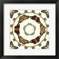 Butterfly Collector II Framed Print