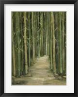 Framed Bamboo Forest