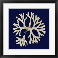 Framed Seaweed on Navy I