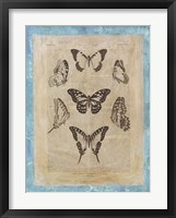 Bookplate Butterflies III Framed Print