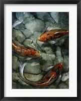 Framed Tres Koi II