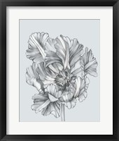 Framed Silvery Blue Tulips I