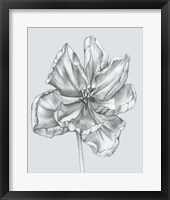 Framed Silvery Blue Tulips IV