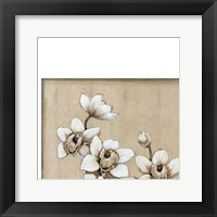 Framed White Orchid I