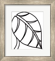 Framed Sprout I