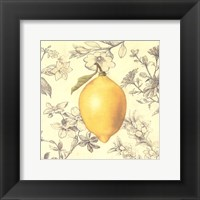 Framed Lemon and Botanicals