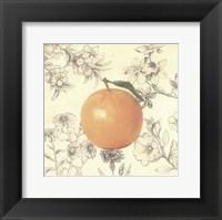 Orange and Botanicals Framed Print