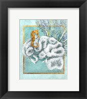 Framed Coral and Seahorse