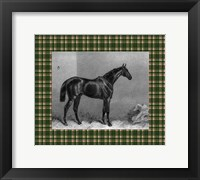 Framed Equestrian Plaid I