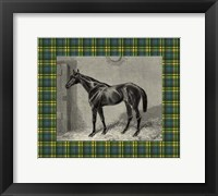 Framed Equestrian Plaid II
