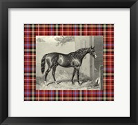 Framed Equestrian Plaid III