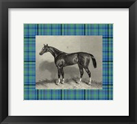 Framed Equestrian Plaid IV