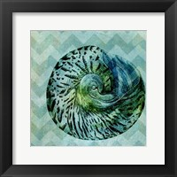 Framed Chevron Shell II