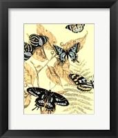 Spa Butterflies in Nature II Framed Print