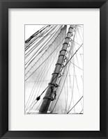 Framed Set Sail VI