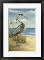 Framed Shore Bird I