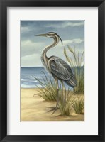 Framed Shore Bird II