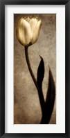 Framed Damask Tulip I