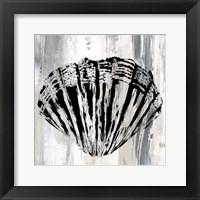 Framed Black Shell II