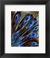Framed Feather I