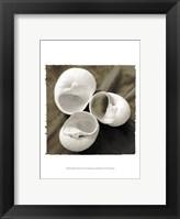 Framed Equalized Shell Trio I