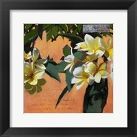 Framed Plumeria & Postage I