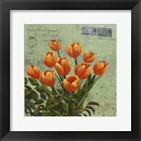 Framed Orange Blooms & Postage II