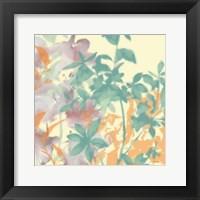 Framed Graphic Bloom Collage I