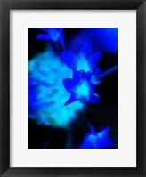 Framed Moon Blue I